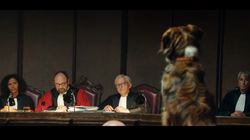 Le film choc de Maïwenn contre l'abandon des