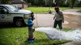 Kristina Watson, a Lake Jackson water waste operator flushes water out from a fire hydrant on Monday, Sept. 28, 2020, in Lake Jackson, Texas. Texas Gov. Greg Abbott issued a disaster declaration on Sunday after a brain-eating amoeba was discovered in the water supply for Lake Jackson, Texas. The disaster declaration extends across Brazoria County, where Lake Jackson is located.The disaster declaration comes after the death of a 6-year-old boy who was infected by a brain-eating amoeba. (Marie D. De Jesús/Houston Chronicle via AP)