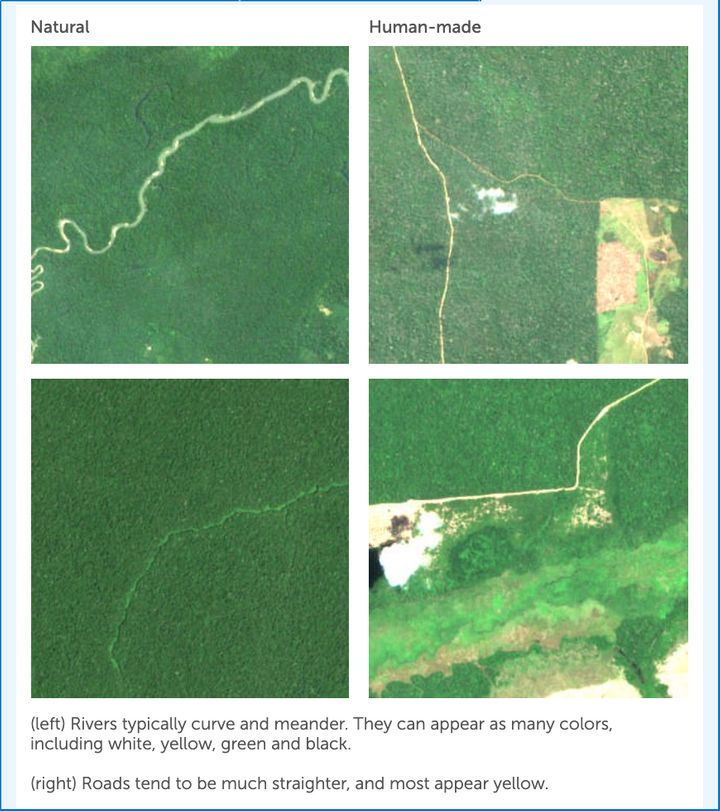 The deforestation app offers some helpful hints, but it can still be difficult to tell natural deforestation from human impac