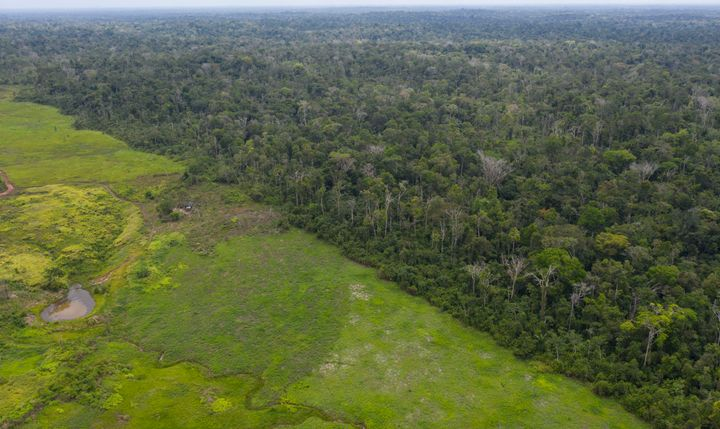 This Sept. 5, 2019 photo shows an aerial view of the Alto Rio Guama Indigenous Reserve next to a deforested area owned by cat