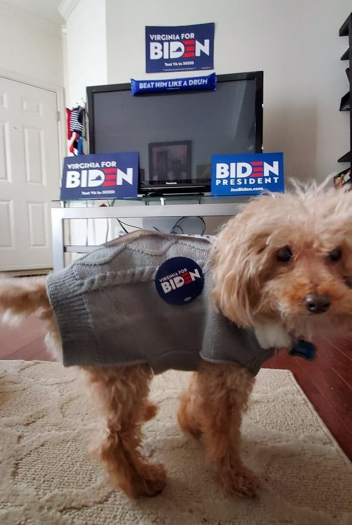 Amanda Linton, a Biden super fan in Virginia, named her dog after the Democratic presidential nominee.