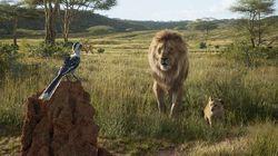 """Le """"Roi Lion"""" aura bien une suite et on sait qui la"""