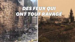 Les images de désolation après les incendies dans les célèbres vignobles de Napa