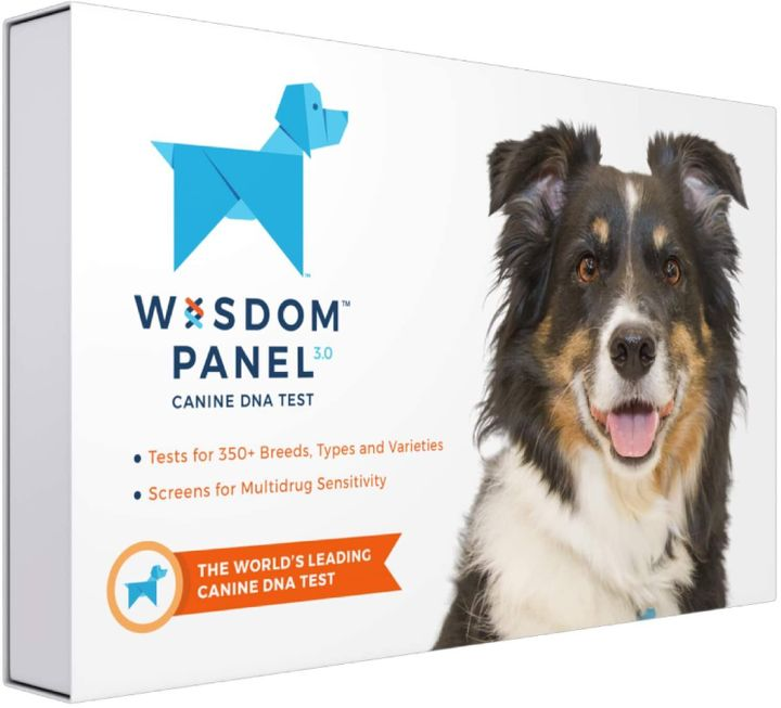 "Get Wisdom Panel's dog DNA kit for <a href=""https://amzn.to/33QIma7"" target=""_blank"" rel=""noopener noreferrer"">$62 on Amazon</a>&nbsp;this Prime Day. It&rsquo;s also <a href=""https://fave.co/2InCw7W"" target=""_blank"" rel=""noopener noreferrer"">$20 off at Chewy</a>"
