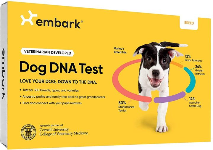 "Get the Embark dog DNA kit for <a href=""https://amzn.to/36W9whR"" target=""_blank"" rel=""noopener noreferrer"">$99 on Amazon</a>&nbsp;this Prime Day.&nbsp;"