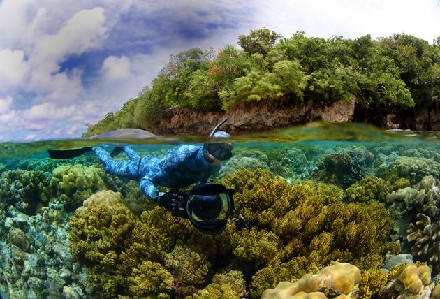 Enric Sala launched the National Geographic Pristine Seas project in 2008 to explore and help save the...
