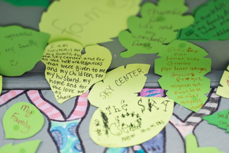 Leaves from the Forest of Gratitude with messages on them at the Sky Center.