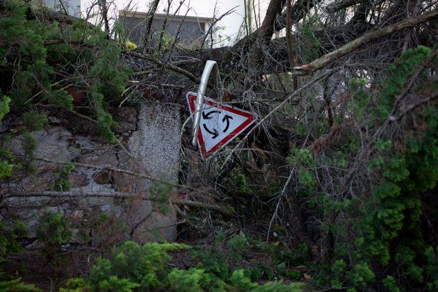 La tempête Alex a fait un mort en Bretagne. Selon la préfecture, il s'agit d'un cycliste...