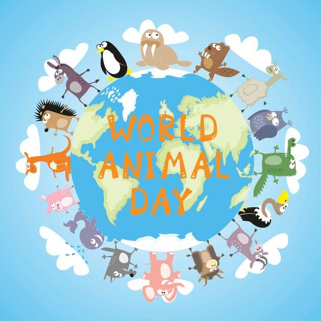 Παγκόσμια ημέρα των ζώων: Συγκινητικά μηνύματα και φωνές