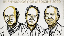Le prix Nobel de médecine 2020 récompense la découverte du virus de l'hépatite