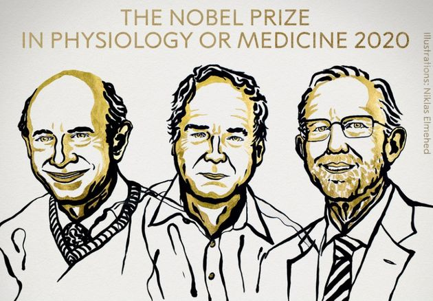 Le prix Nobel de médecine 2020 a récompensé la découverte du virus de l'hépatite C par Michael Houghton,...
