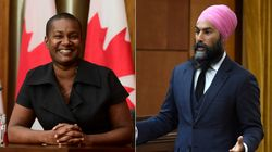 New Green Party Leader Not Surprised Singh Won't Return 'Leader's