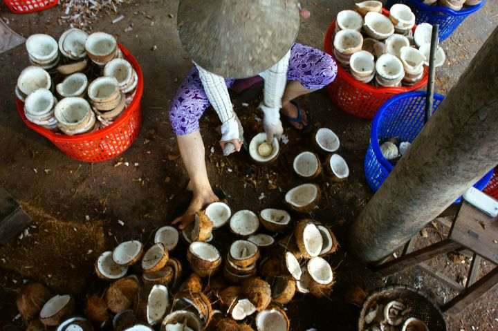 Workers process coconut fruit to make candy and oil in the Mekong Delta, Vietnam.