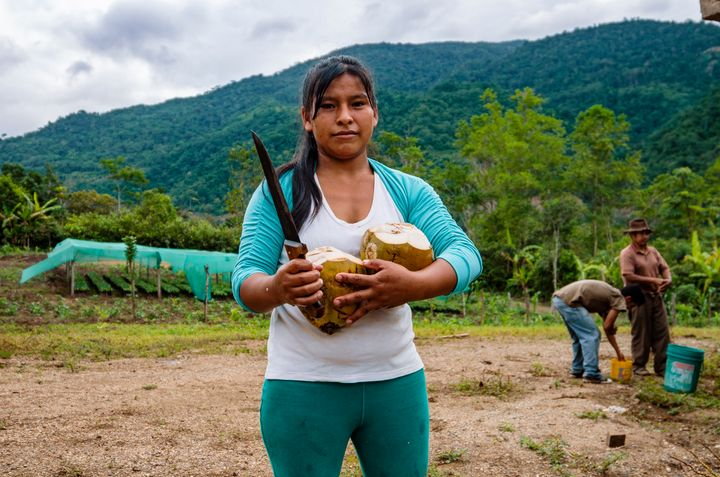 A Peruvian farmer holds fresh coconut on her farm.
