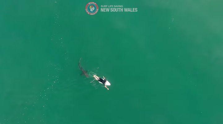 Australian surfer Matt Wilkinson had a close encounter with a shark in Ballina.
