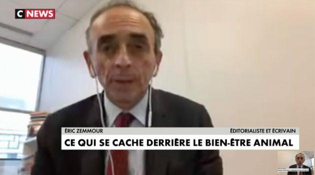 Fiévreux, Éric Zemmour était en direct depuis un bureau de CNews ce mercredi 7