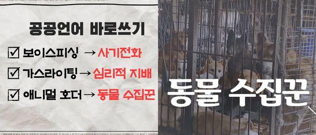 연합뉴스TV 유튜브 '[맛있는 우리말] 8회 : 공공언어 바로쓰기' 편에 소개된 '동물