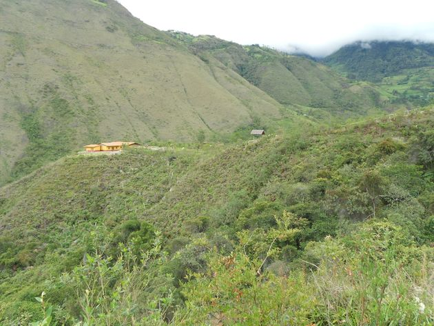 The tiny Huembo reserve is perched in the Andean cloud forests of northern Peru, near the town of