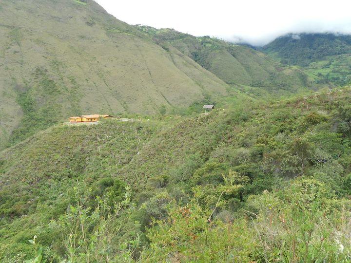 The tiny Huembo reserve is perched in the Andean cloud forests of northern Peru, near the town of Pomacochas.