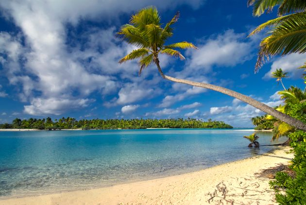 Palm tree over lagoon on One Foot Island, Aitutaki,The Cook