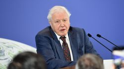 David Attenborough Calls Out The 'Excesses' Of Capitalism In A World Facing Climate