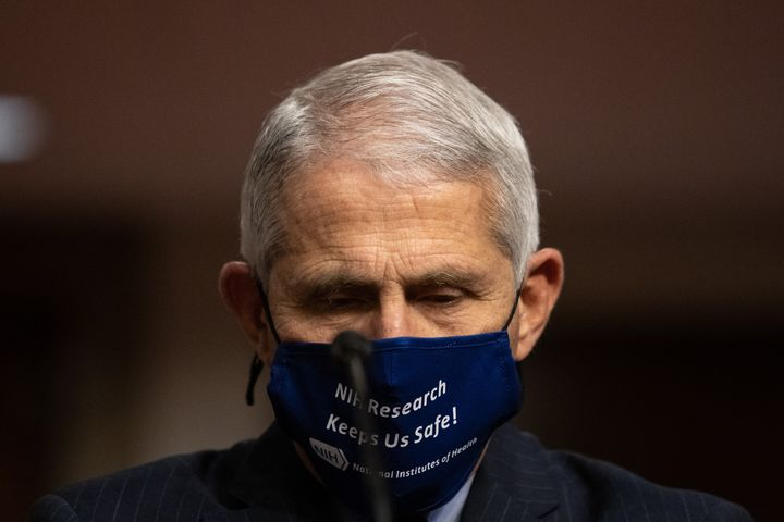 Dr. Anthony Fauci, director of the National Institute of Allergy and Infectious Diseases, testifies before the Senate Health,