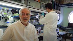 El mayor experto español en coronavirus, indignado por la situación en Madrid: no puede ser más claro señalando al