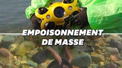 Ce drone marin permet d'en savoir plus sur la catastrophe écologique du