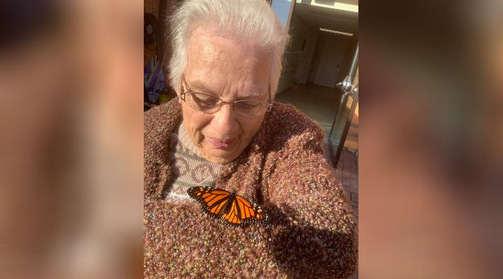 Shirley McFarlane, 84, with a monarch at Golden Dawn.