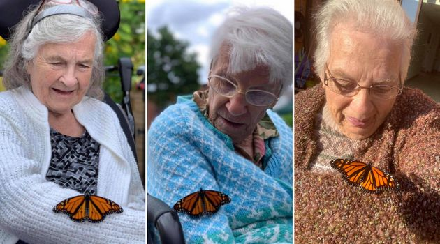 From left: Sandy Taylor, Pat Horner and Shirley McFarlane with monarch butterflies at Golden Dawn retirement...