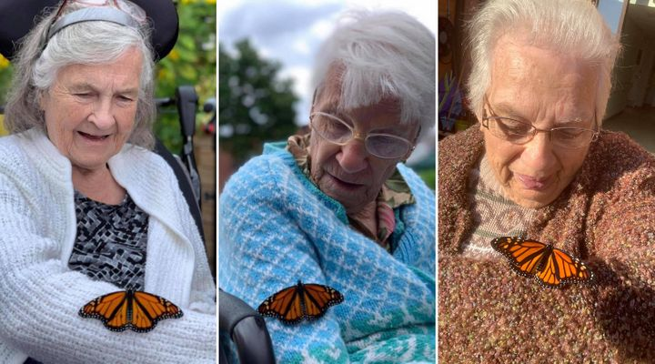 From left: Sandy Taylor, Pat Horner and Shirley McFarlane with monarch butterflies at Golden Dawn retirement home in Lions Head, Ont.