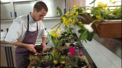 BLOG - La gastronomie française doit faire sa révolution: cuisiner moins de