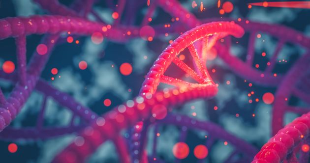 A cause d'un gène ou d'un groupe de gènes, un virus peut entraîner des symptômes...