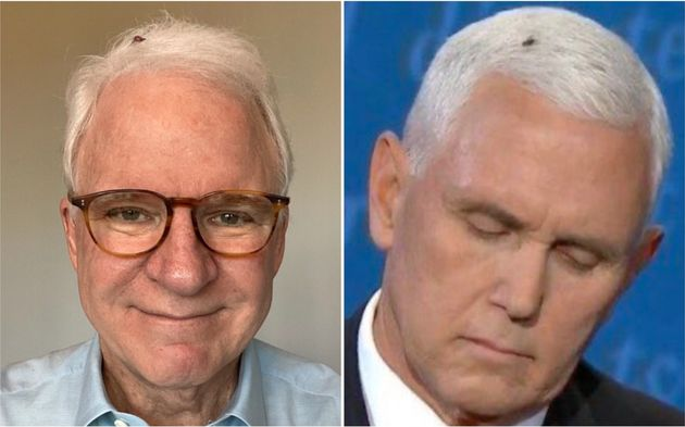 Steve Martin's Mike Pence Halloween Costume Is So Simple, Yet So
