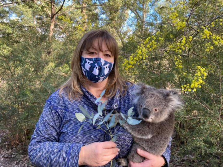 Shelley Robinson (above) is one of four wildlife carers at Koalas of Raymond Island shelter.