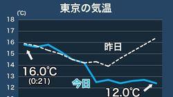 東京は、初冬の寒さです。気温は昼間でも12℃台、体感気温はもっと低いもよう...