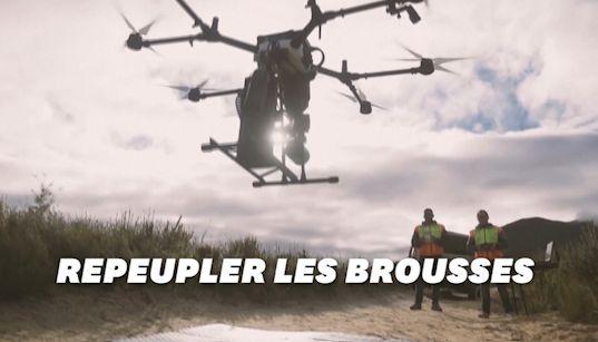 En Australie, les drones, alliés pour replanter la brousse ravagée par les