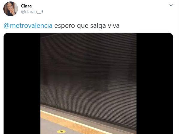Un corzo en el metro de