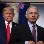 Trump s'énerve contre le Dr Fauci