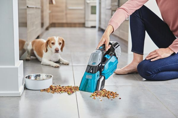 "Granted, a <a href=""https://www.blackanddecker.com/products/home-cleaning/vacuums/handheld-vacuums/spillbuster-cordless-spill"