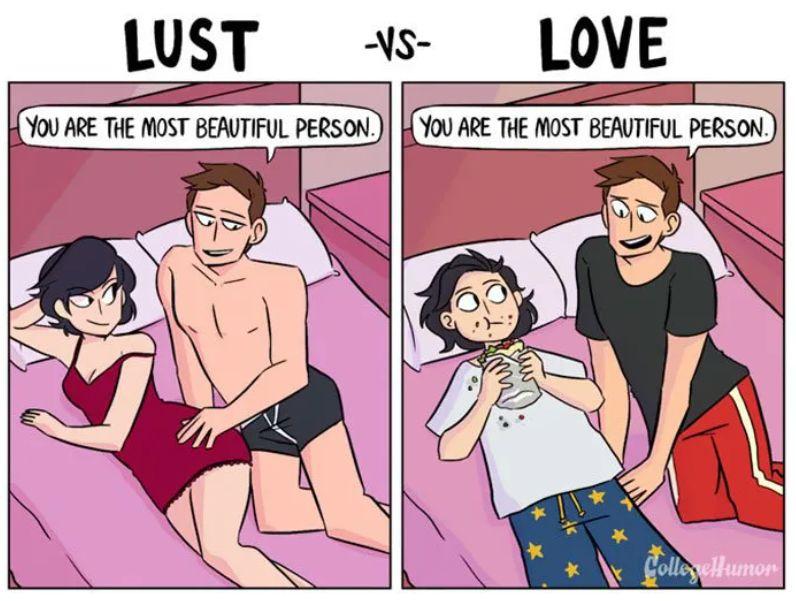 성욕과 사랑의 차이를 보여주는 일러스트