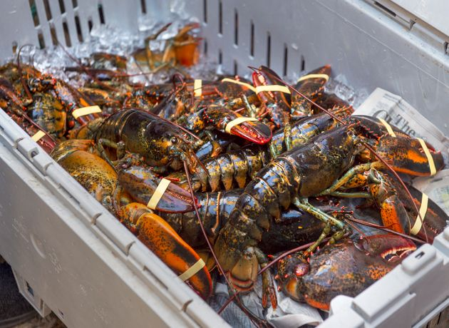 A crate of lobsters sits on the sidewalk as Cheryl Maloney, a member of the Sipekne'katik First Nation,...