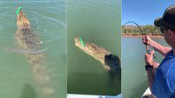 Man Versus Crocodile Battle As Fisherman Reels In Massive Saltwater