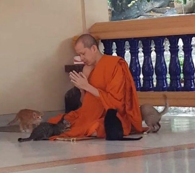 「完全に煩悩を消し去っている」と話題のタイの僧侶の動画より
