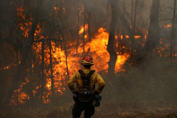A Cal Fire firefighter monitors flames in Calistoga, California, earlier this month.