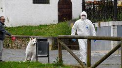 Asturias también solicita al Gobierno que declare el estado de alarma para aplicar el toque de