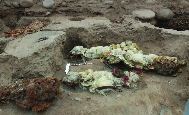 Les lamas auraient été enterrés entre 1432 et