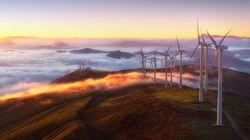 Recuperación económica y cambio climático: se buscan