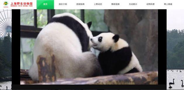 上海野生動物園の公式サイト