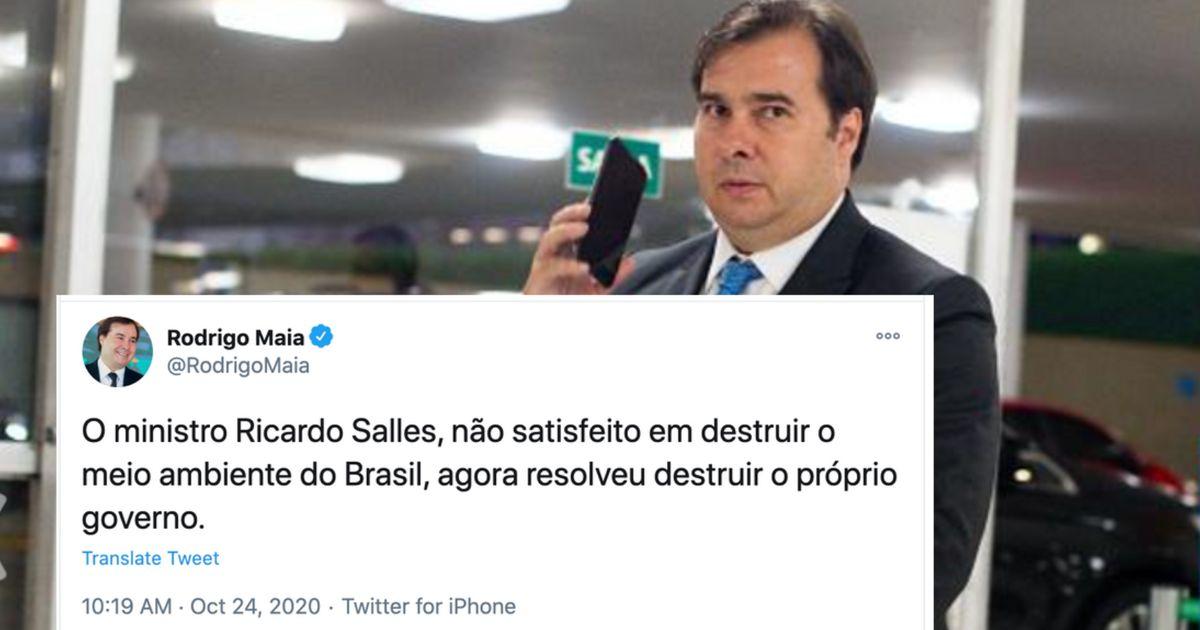 Maia sobre Salles: Não satisfeito em destruir o meio ambiente, resolveu destruir o governo   HuffPost Brasil